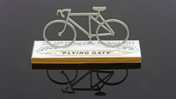 Flying Gate model 2013